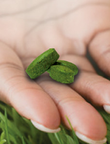 Hand holding pills made of grass